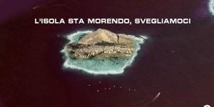 Palermo - Catania a Caltavuturo i cittadini scendono in campo3